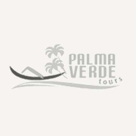 Palma Verde Tours